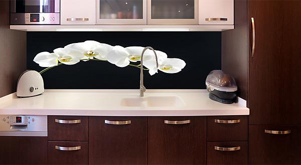 Fototapeta za kuchy u0148skou linku Bílá orchidej 18547 Napojitelné vzory tapet do kuchyn u011b za