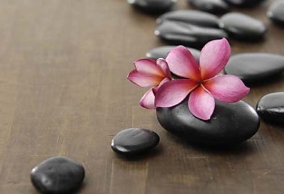 Fototapeta - Black Zen Pebbles and Flower 4080
